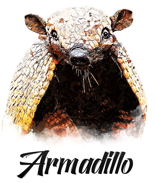 Armadillo T-Shirt - Vivid Colors
