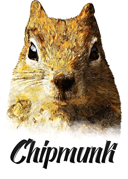 Chipmunk T-Shirt - Vivid Colors