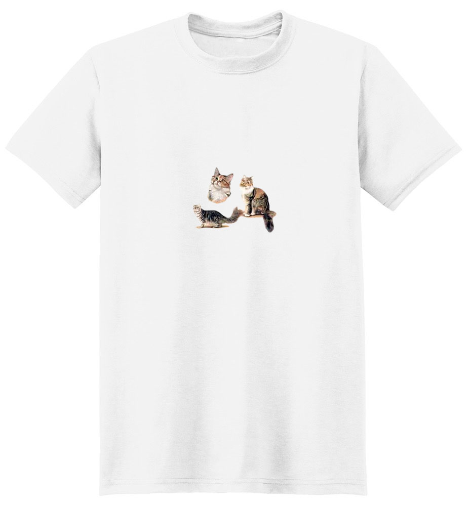 Tabby Cat T-Shirt - Trio of Three