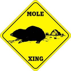 Mole Crossing