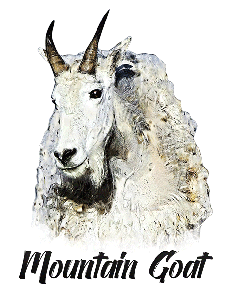 Mountain Goat T-Shirt - Vivid Colors