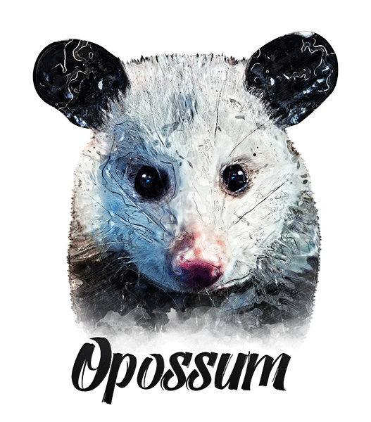 Opossum T-Shirt - Vivid Colors
