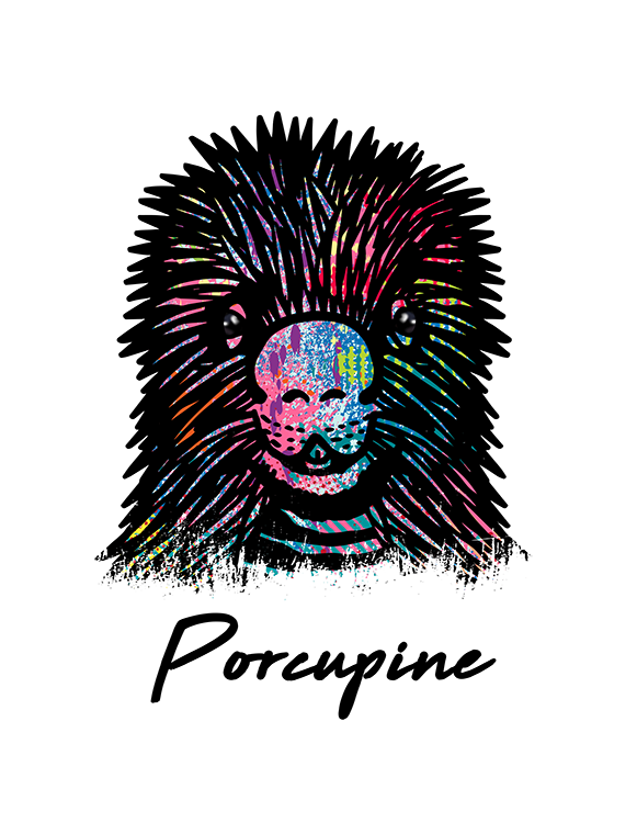 Porcupine T Shirt Colorful Abstract