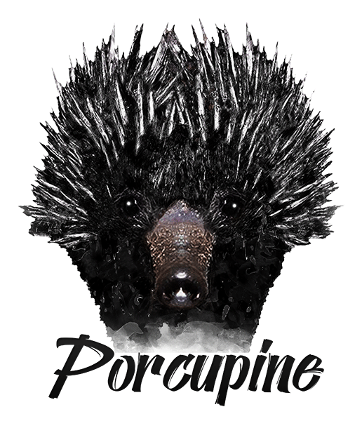 Porcupine T-Shirt - Vivid Colors