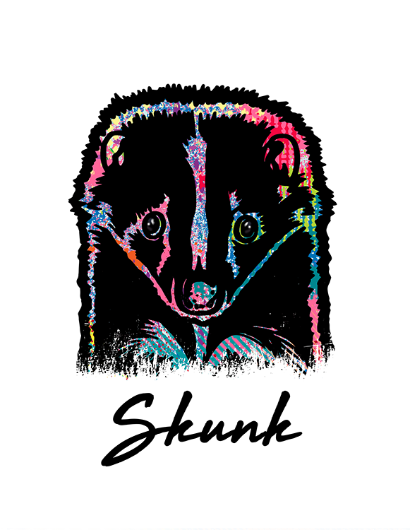 Skunk T Shirt Colorful Abstract