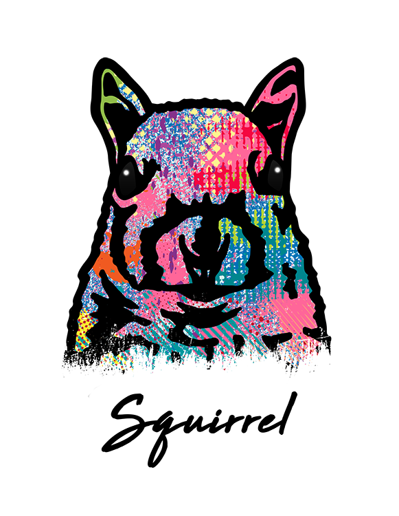 Squirrel T Shirt Colorful Abstract