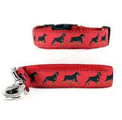 Rottweiler Collar & Leash