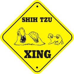 Shih Tzu Crossing