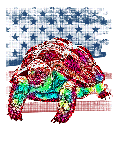 Turtle T Shirt American Flag