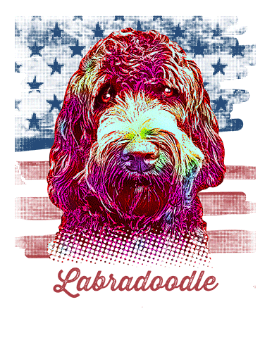 Labradoodle T Shirt American Flag