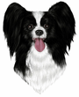 Papillon Decal Window Sticker