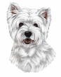 West Highland Terrier Decal Window Sticker