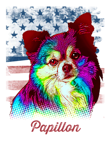 Papillon T Shirt American Flag