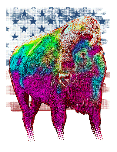 Buffalo T Shirt American Flag