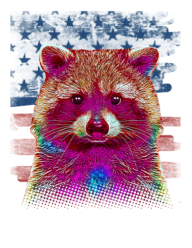 Raccoon T Shirt American Flag