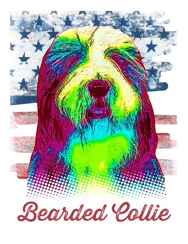 Bearded Collie T Shirt American Flag