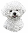Bichon Frise Decal Window Sticker