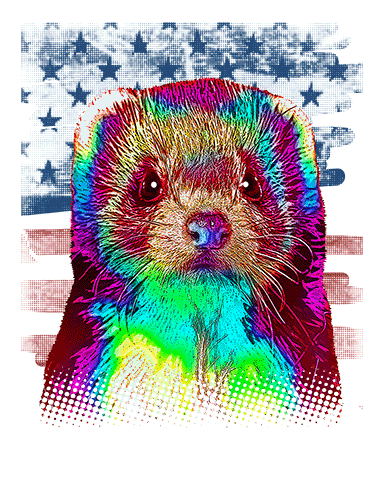 Ferret T Shirt American Flag