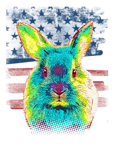 Rabbit T Shirt American Flag