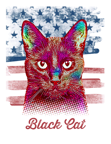 Black Cat T Shirt American Flag
