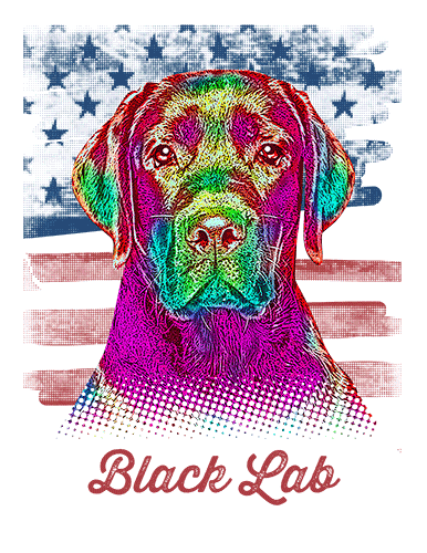 Black Lab T Shirt American Flag