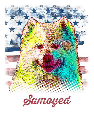 Samoyed T Shirt American Flag