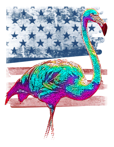 Flamingo T Shirt American Flag