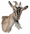 Goat Decal Window Sticker