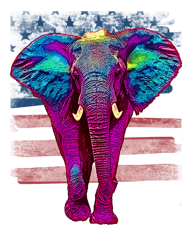 Elephant T Shirt American Flag