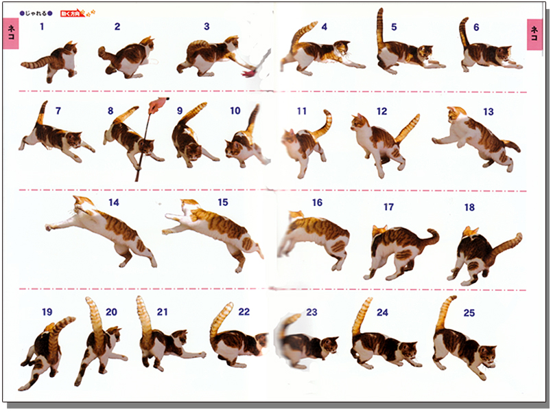 Action Pose Collection Vol 3 Animals Movements Anime