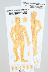 Atlas of Acupuncture Points - Charts