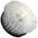 Cyclo Polisher White Standard Carpet Brush