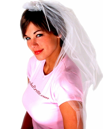 Our Own Bachelorette Party Veil - Top Quality