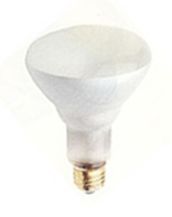 BR30 Incandescent Light Bulbs (R30)