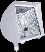 RAB Compact Fluorescent (CFL)