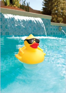 Solar Powered Duck Floating Chlorinator and Pool Light