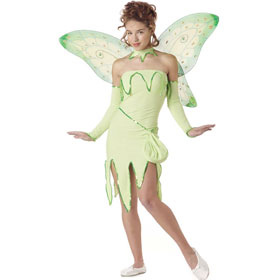 Teen Emerald Fairy Costume
