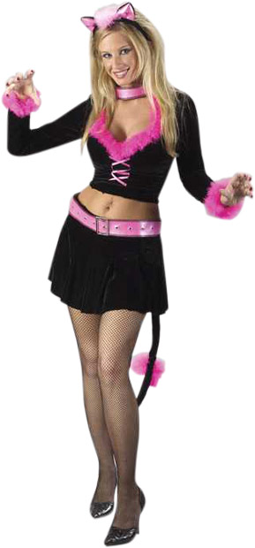 Sexy Pretty Pink Cat Lady Costume