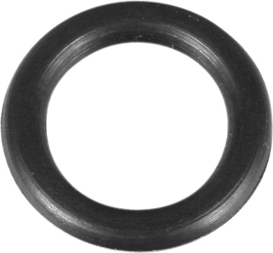 Intex Sediment and Air Release Valve O-Ring