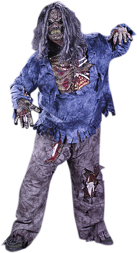 Plus Size Walking Dead Zombie Costume