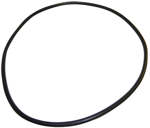 Jandy D.E. Filter Tank O-Ring