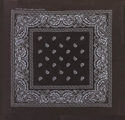 Double Sided Black Paisley Bandanas