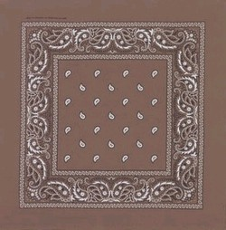 Double Sided Light Brown Paisley Bandanas
