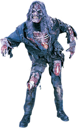 Adult Walking Dead Zombie Costume