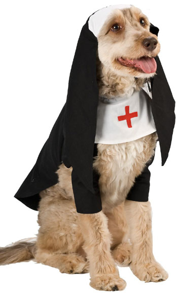 Nun Dog Costume