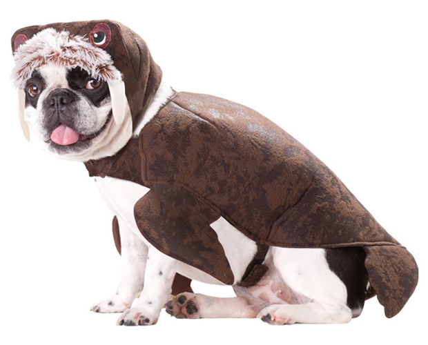 Dog Walrus Costume  sc 1 st  Brands On Sale : fish costume for dogs  - Germanpascual.Com