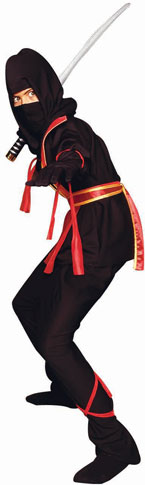 Child's Ninja Master Red Costume