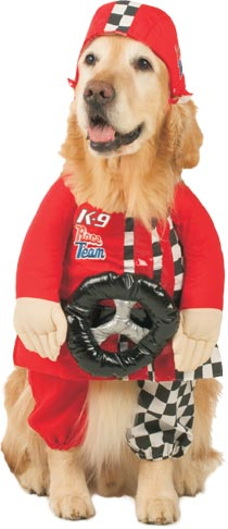 Race Car Driver Dog Costume