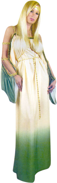 Adult Grecian Princess Costume