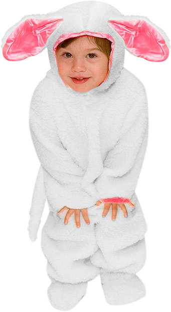 Toddler Lamb Costume
